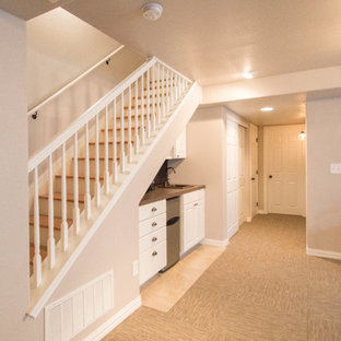 This is an example of a small classic fully buried basement in Denver with brown walls, carpet and no fireplace.