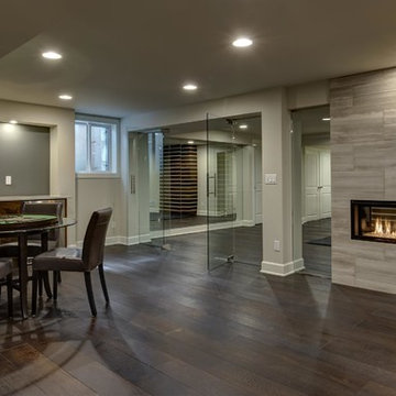 Basement Game Room, Fireplace and Glass Wall