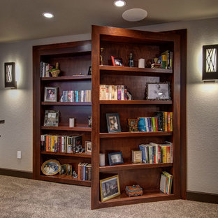 Basement Hidden Bookcase open