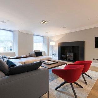 Ejemplo de sótano con puerta minimalista, grande, con paredes grises, suelo de madera clara, estufa de leña y marco de chimenea de piedra