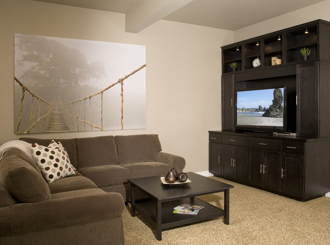 Contemporary Basement by Hill Custom Homes