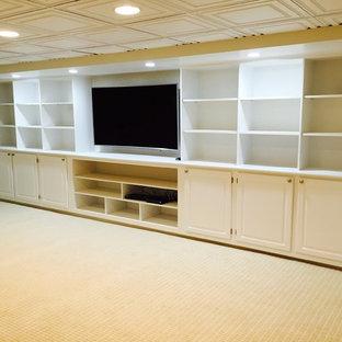 Basement - contemporary basement idea in New York