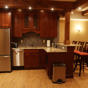 traditional new york basement design ideas pictures