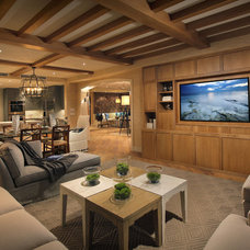 Contemporary Basement California Coastal in Naples Florida