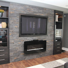 Contemporary Basement Contemporary Basement