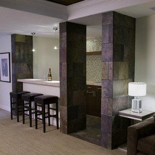 Basement - modern basement idea in Denver