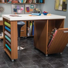 Contemporary Basement by EcoNize Closets