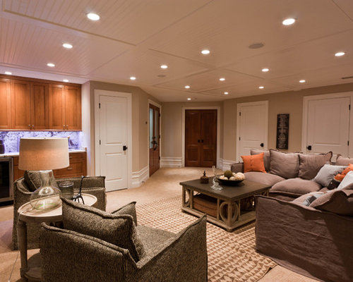 Houzz Basement Ceiling Ideas Design Ideas Amp Remodel Pictures