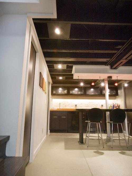 basement lighting houzz