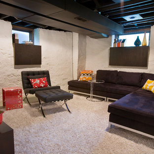 Example of a minimalist look-out carpeted and white floor basement design in Cincinnati with white walls and no fireplace