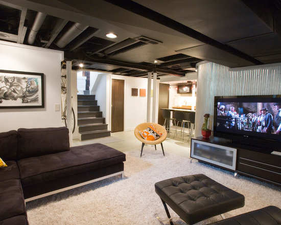 70 Best Industrial Basement Ideas Remodeling Photos Houzz
