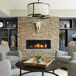 Large transitional walk-out basement photo in Minneapolis with gray walls, a ribbon fireplace and a stone fireplace