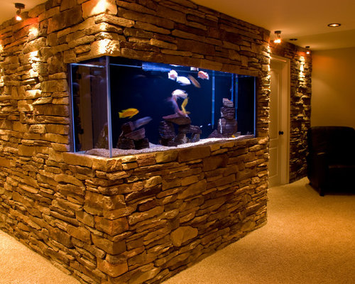In-Wall Fish Tank Ideas, Pictures, Remodel and Decor