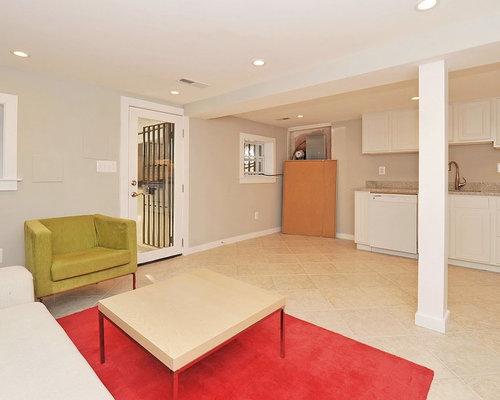 florida basement design ideas renovations photos