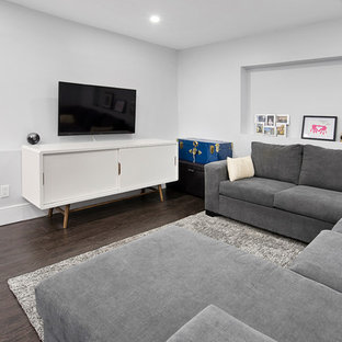 Inspiration for a mid-sized contemporary laminate floor and brown floor basement remodel in Toronto with gray walls
