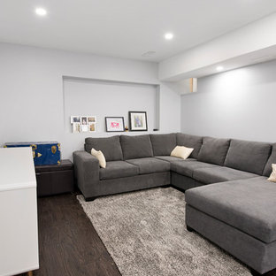 Basement - mid-sized contemporary basement idea in Toronto