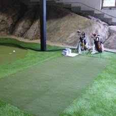 Traditional Basement by Synthetic Turf International of Canada