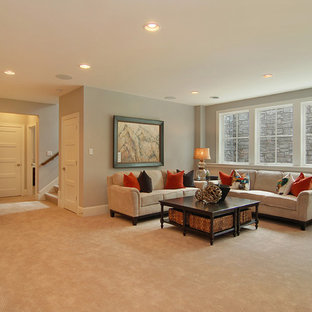 Inspiration for a transitional basement remodel in Minneapolis