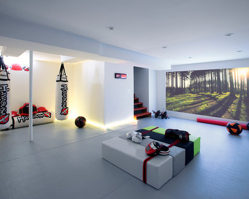 Houzz martial arts dojo design ideas remodel pictures for Contemporary basement designs
