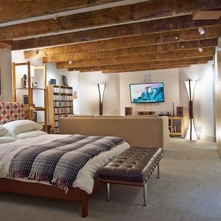 example of a mid sized trendy gray floor basement design with white walls - Basement Bedroom Ideas