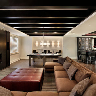 Large trendy dark wood floor and brown floor basement photo in Chicago with white walls, a ribbon fireplace and a metal fireplace