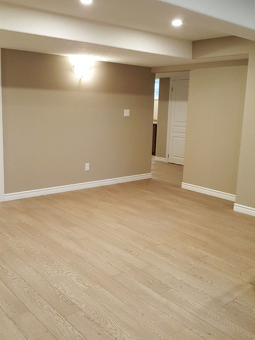 basement design ideas renovations photos with laminate floors
