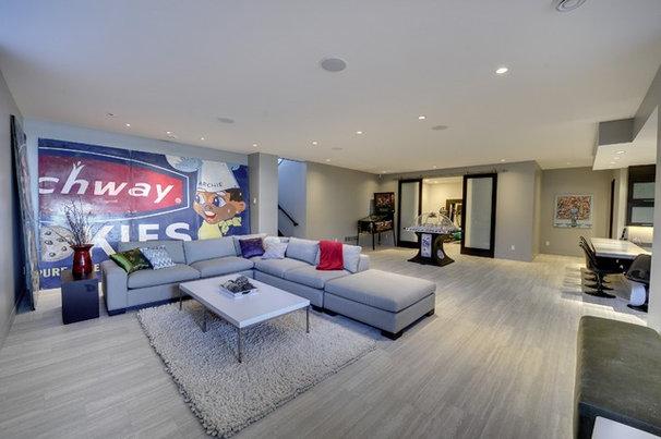 Contemporary Basement Low level entertaining space