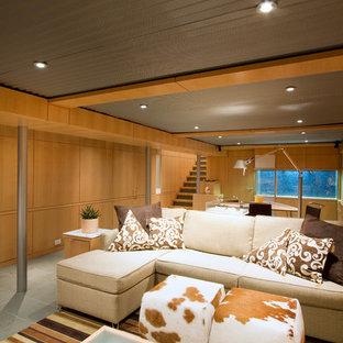 Foto de sótano con ventanas retro, grande, sin chimenea, con paredes marrones, moqueta y suelo verde