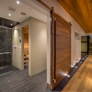 Basement - rustic basement idea in Denver