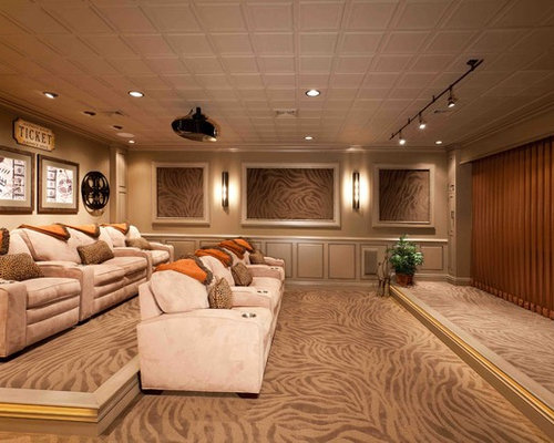 movie theater living room. Example of a transitional basement design in Other Movie Theater Room  Houzz