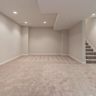 Basement - craftsman basement idea in Chicago