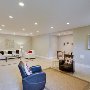 Large arts and crafts look-out carpeted and beige floor basement photo in DC Metro with gray walls