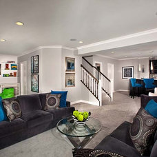 Contemporary Basement by Laura Manning Bendik