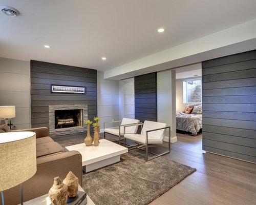 Modern Basement Design Ideas, Pictures, Remodel & Decor