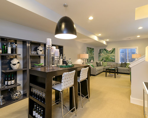 basement ideas. Trendy Carpeted And Beige Floor Basement Photo In DC Metro With White Walls Ideas