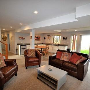Modelo de sótano con puerta tradicional renovado, grande, con paredes grises, moqueta, estufa de leña, marco de chimenea de baldosas y/o azulejos y suelo gris