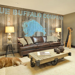 contemporary basement by Beth Rosenfield Design LLC