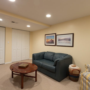 Small Basement Remodeling Chicago