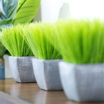 Smith Mountain Lake Basement Lounge Space- grass in planter
