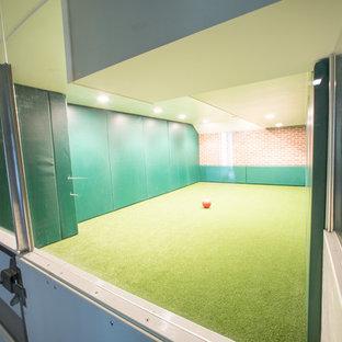 Cette image montre un grand sous-sol minimaliste enterré avec un mur vert, moquette, aucune cheminée et un sol vert.