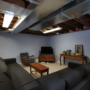 Basement - traditional basement idea in Minneapolis