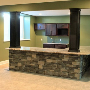 Photo of a traditional walk-out basement in Other with green walls and carpet.