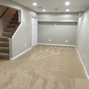 Basement - small traditional carpeted basement idea in Chicago with gray walls