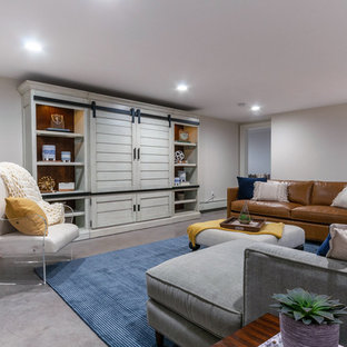 Basement - transitional basement idea in New York