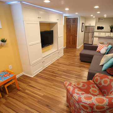 Transitional Basement