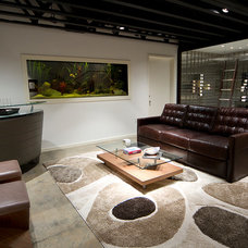 Contemporary Basement by Cantoni