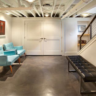75 Beautiful Midcentury Modern Basement Pictures Amp Ideas