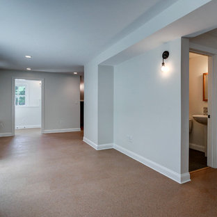 Mid-sized trendy walk-out cork floor basement photo in Boston with gray walls