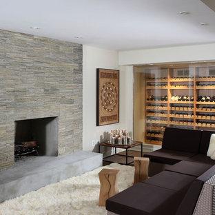 Inspiration för moderna källare, med en spiselkrans i sten, en standard öppen spis, mörkt trägolv och vita väggar