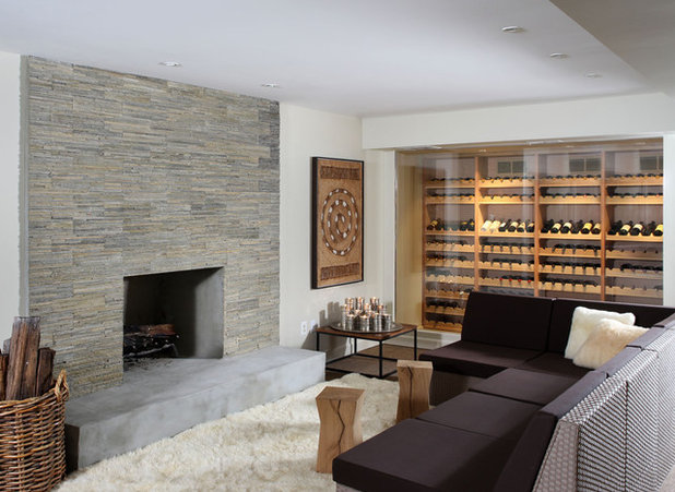Contemporary Basement by NF interiors